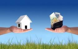 Mua bán nhanh HCM: Những điều cần biết khi mua đất